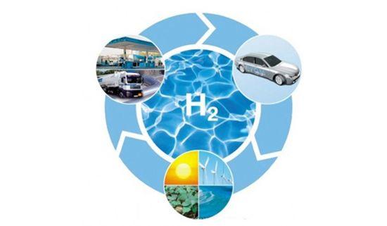 財政部、燃料電池車に新たな補助金を設けるべきではない